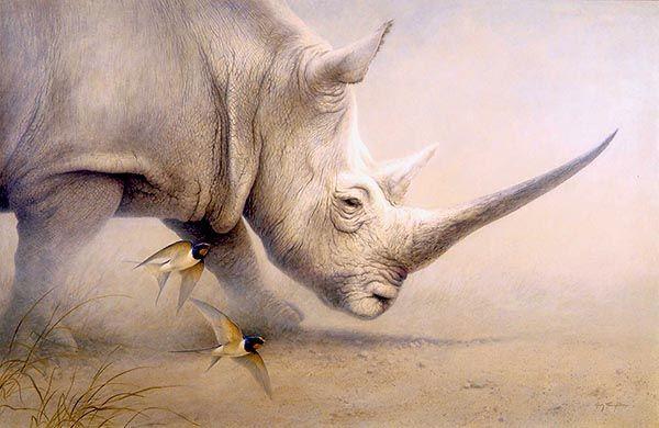 La imagen tiene un atributo ALT vacío; su nombre de archivo es rinoceronte-totem.jpg